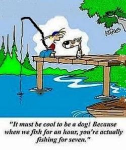 dog-life-span